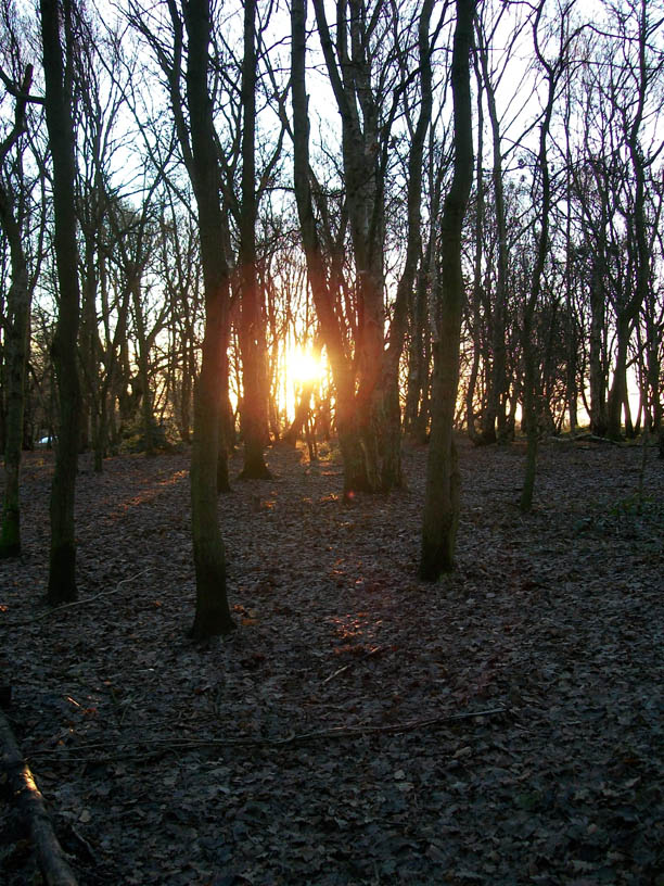 mark - big wood sunset 1